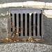 Doulton drain cover