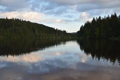 Windgfllweiher, Hochschwarzwald (elwetritsche) Tags: weiher lake windgfllweiher hochschwarzwald schwarzwald blackforest germany badenwrttemberg lenzkirch sunset tannen schwarzerwald see sonnenuntergang