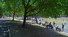 Cool on the Common (AntyDiluvian) Tags: boston massachusetts park common bostoncommon shade walk path trees pond frogpond swimming splashing cool