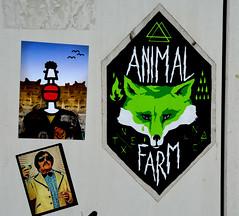 graffiti (wojofoto) Tags: graffiti wojofoto wolfgangjosten antwerpen belgie belgium stickers sticker animalfarm wojo