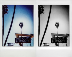In-N-Out Double Double (tobysx70) Tags: fujifilm fuji instax mini instant film share smartphone printer sp1 bw black white filter diptych innout burger sunset blvd boulevard hollywood los angeles la california ca sign red yellow arrow logo palm tree trees blue sky fast food restaurant hamburger french fries shakes doubledouble animal style thatswhatahamburgersallabout toby hancock photography