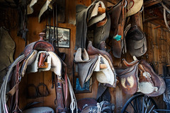 The saddle shed (trochford) Tags: saddle saddles stirrups reins bridles equestrian shed old wooden naturallight availablelight eccardtfarm washingtonnh nh newhampshire newengland usa canon indoor interior