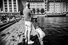 Images on the run.. (Sean Bodin images) Tags: kulturhavn kulturhavn2016 streetphotography streetlife strget urbanlife urban photojournalism documentery reportage people copenhagen harbor summer 2016 ofeliaplads ofelia