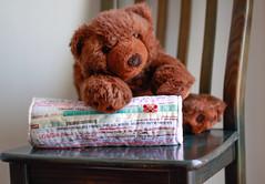 A Conversa  /  Talking (Canela Cheia) Tags: almofada artesanato bear brown castanho colors cores handmade patchwork pillow retalhos selvages urso