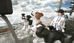 [] a new world on every channel (taeeetae) Tags: sl slife s l second life slurl virtual world tv television dogs puppy green story location destinations explore discover beautiful clouds water asian cute pretty pose