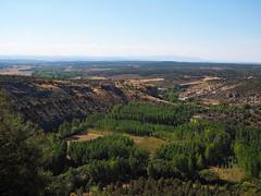 Castillo de Ucero (dlmanrg) Tags: soria castillalen espaa castillos ruinas entrearboles templarios medieval verde valles