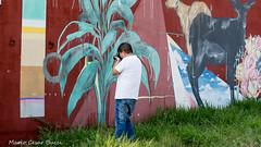 _DSC6048 (Mario C Bucci) Tags: saida fotografia pacheco paulo tellis mario bucci hugo shiraga fabio sideny roland grafites volu ii