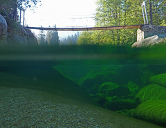 Merced River Over/Under (kirknelson) Tags: wawona river mercedriver yosemite overunder underwater california
