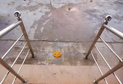 IndiaSjRPhotoFlickrUpld094 (SusanR.photos) Tags: india chalkart kolam