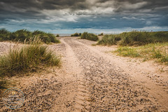 Through the Dunes (SimonTHGolfer) Tags: landscape landscapephotography hdr beach sand marramgrass sky weather suffolk pakefield eastanglia eastcoast clouds nikon simontalbothurnphotography tracks detail dunes coast