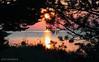 5034 (igor.meiden) Tags: рига латвия балтийскоеморе старейшиймаяклатвииврайонеовиши доммаячникаоколостарейшегомаякалатвииврайонеовиши цветынаберегуморяврайонеовиши камнивпескенаберегуморяврайонеовиши закат–солнцетонетвмореврайонеовиши самыйвысокиймаяклатвии–микельторнис церковьоколомаякамикельторнис речкамазирбевпадаетвбалтийскоемореоколостолицыливовгородкамазирбе крошечнаяптичканакамненаберегубалтийскогоморяврайонепоселкамерсрагс балтийскоемореврайонегородкамерсрагс морскиерастениявокругкамняврайонегородкамерсрагс камнивмореврайонегородкамерсрагс ночьнаберегубалтийскогоморя рассвет–видсберегабалтийскогоморяврайонегородкамерсрагс орхидеинаберегубалтийскогоморяriga latvia balticsea theoldestlighthouseinlatviaintheareaovīši lightkeeperhouseneartheoldestlighthouseinlatviainovīšiareaontheseafrontflowersinovīšiarea stonesinthesandontheseashoreinovīšiarea sunsetthesunsinksintotheseaintheareaovīši thehighestlighthouseinlatviamikeltornis achurchnearthelighthousemikeltornis mazirberiverflowsintothebalticseanearthetownofmazirbelivcapital atinybirdonarockontheshoreofthebalticseanearthevillagemersrags thebalticseainthetownareaofmērsrags marineplantsaroundthestoneinthetownofmersragsdistrict stonesintheseanearthetownofmersrags ontheshoreofthebalticseanight sunriseviewfromthebalticseacoastinthetownofmersragsdistrict orchidsontheshoreofthebalticsea