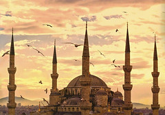 Blue Mosque (micebook) Tags: turkey istanbul city capital culture centre town buildings architecture sky birds landmarks