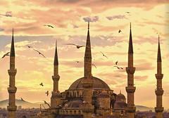 Blue Mosque (micebook) Tags: turkey istanbul city capital culture centre town buildings architecture sky birds landmarks