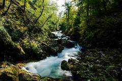 Beautiful Slovenia (A.Keskin) Tags: slovenia vintgar vintgargorge longexposure silky water river creek green trees forest