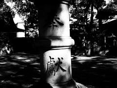 Tenjinnomori Tenmangu, Nishinari, Osaka (jtabn99) Tags: monochrome jinja tenjinnomori temangu osaka japan nihon nippon blackwhite 20160927