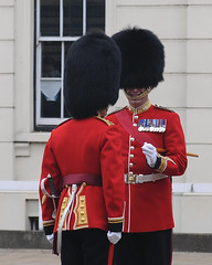 Img554966nx2 (veryamateurish) Tags: unitedkingdom british military army london wellingtonbarracks changingoftheguard publicduties ceremonial guardmounting newguard footguards householddivision grenadierguards