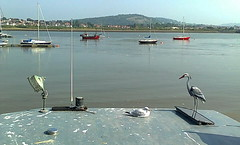 Looking across the River Conwy (southglosguytwo) Tags: 2016 cameraphonephoto holiday september wales birds conwy riverconwy seagull sky water