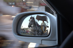 Horse Riding. (UN Assistance Mission in Afghanistan) Tags: 20160930 30september2016herat30september2016 herat afghan afghanistan fraidoonpoya myafghanistan photo photos un unama featured featuredatinstagram featuredatunamainstagram featuredatunamanewsinstagram featuredphotos featuredphotosatunamainstagram instagram instagramfeatured news photosusedatinstagram unamanews unamanewsinstagram unamanewsinstagramfeatured used usedatinstagram unitednations flickr facebook unamaflickr unamafacebook unamatwitter unamaunmissions missions dailylife sliceoflife 2016 september health working horseriding road heratcity modern traditional transport horse cart automobile car vehicle afg