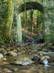 20161015Brcke-6 (s.schulthess) Tags: bridge brcke bro pont wald forest frat baum tree arbre wasser water bach river moos landschaft landscape natur nature schweiz switerland