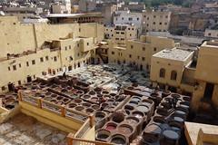 DSC06546 (cle1759) Tags: fez fes travel morroco tinte artesano