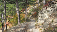 Yalta, Dolossi (Extrud) Tags: yalta dolossi ukraine wald natur berge herbst     2016     olympus pen epl7 trail weg
