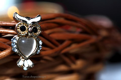 owl (Tarun Chopra) Tags: