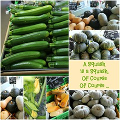 Squash Collage (Couscous & Consciousness) Tags: vegetables pumpkin buttercup squash zucchini butternut courgette zucchiniblossoms nelsonmarket