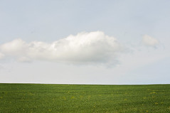 Minimalist Landscape (Apples and Oats Photography) Tags: summer bluesky minimalism summerdays greengrass greenandblue wunderlust landscapephoto summerlandscape lazysummer happylandscape