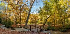 Parc de Saint-Pons sur la commune de Gémenos (aups83) Tags: france nature automne nikon rivière paca provence parc forêt panoramique ruisseau d90 saintebaume saintpons gémenos forêtdautomne valléedesaintpons