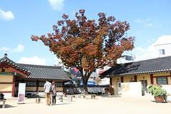 _IMG_2682 (Kim Hanwool) Tags: korea wonju  ancientgovernmentoffice