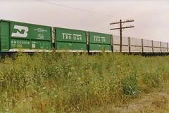 Trough Train - BN 552008 (2) (Matt_Schimmel) Tags: film bn coal kline burlingtonnorthern elsberrymissouri troughtrain hannibalsub