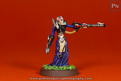 Haemonculus (front) (Pedro Nogueira Photography) Tags: toys photography character games hobby fantasy showcase figures warhammer40k gamesworkshop modelismo darkeldar modelism haemonculus scify pedronogueira pedronogueiraphotography vallejoacrylics acrylicosvallejo