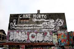 IMG_5502 (motveggen) Tags: streetart bergen gatekunst menneske canemorto streetartbergen motveggen