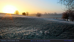 Creating a most wintry scene. (Tony / Guy@Fawkes) Tags: winter light sunrise frost ngc npc fields