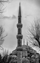 Blue Mosque (Istanbul) (I) (manuela.martin) Tags: blackandwhite bw architecture turkey istanbul mosque türkei architektur bluemosque blauemoschee schwarzundweis