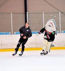 Haie laufen für Haie 2014