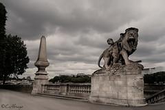 Escultura Paris (Carlos Abrego Marchueta) Tags: sky sculpture storm paris france clouds canon stones lion escultura leon cielo nubes tormenta francia piedras draganizer abrego carlosabrego
