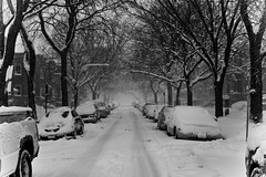 MOAR SNOW! (**PhotoSchmoto**) Tags: street winter snow chicago blizzard chicagoist chicagoblizzard blizzardof15 blizzardof2015