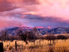 IMG_1721 (Tina A Thompson) Tags: arizona storm stormclouds willcox skycandy willcoxaz cochisecounty chiricahuamountains arizonaranches