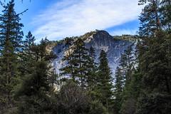 Yosemite Trip - Jan 2015 - 168 (www.bazpics.com) Tags: california park ca usa nature america landscape scenery unitedstates hiking national yosemite barryoneilphotography