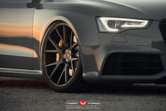 Audi RS5 on Vossen Forged- Precision Series VPS-306 Wheels -  Vossen Wheels 2014 - 1006 (VossenWheels) Tags: sandiego tag audi forged madeinusa vossen vps rs5 audiwheels audirs5 vossenwheels madeinmiami vossenforged wwwvossenwheelscom audis5wheels audia5wheels s5wheels teamvossen tagmotorsports audiforgedwheels rs5wheels precisionseries vossenvps vps306 precisionseriesvps306 vossenforgedprecisionseries vossenvps306 audiaftermarketwheels audia5aftermarketwheels audirs5aftermarketwheels audis5aftermarketwheels audirs5forgedwheels audirs5wheels audia5forgedwheels audies5forgedwheels a5wheels audia5aftermarketforgedwheels audis5aftermarketforgedwheels audirs5aftermarketforgedwheels