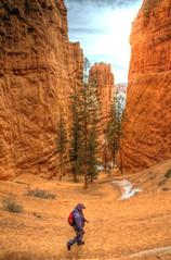 Trek in fantasy.  Bryce Canyon, Utah. (CloudPhotoz) Tags: voyage trip america trek state united son destination parc hdr unis fils randonnée amérique états géologiegeological