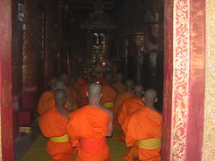 Monks Sitting in Rows