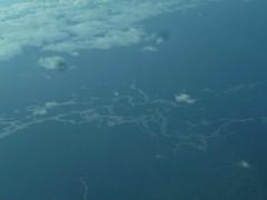 Elaborate Rivers of Guyana