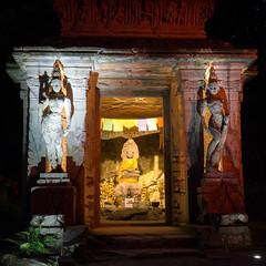 DSC05449 (regis.verger) Tags: temple zen nuit parc nocturne asiatique vgtal maulvrier