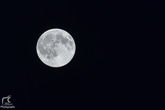 Pleine lune... (Mlanie Du) Tags: world new light summer sky moon nature beautiful night lune happy photography grey photo reflex amazing nice nikon photographie outdoor picture july pic environment amateur watcher naturewatcher d5200 nikond5200