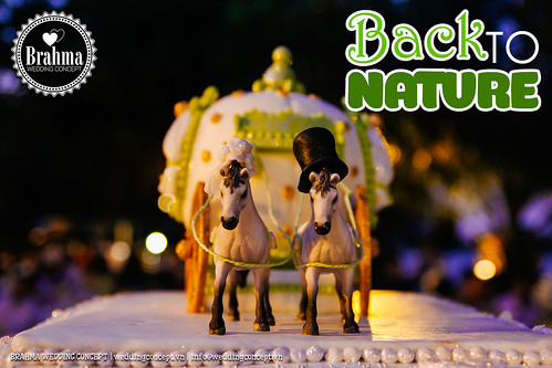 Braham-Wedding-Concept-Portfolio-Back-To-Nature-1920x1280-44