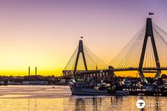 stacks (The Photo Smithy) Tags: blackwattlebay sunset dusk water sydney harbour sydneyharbour australia