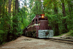 Early Morning Extra at Big Trees (samreevesphoto) Tags: scbt santacruzbigtreespaciifc bigtrees redwoods forest passenger train