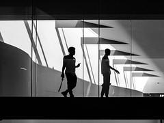 P7120761.jpg (DWO630) Tags: shadow blackandwhite bw white black monochrome silhouette museum virginia voigtlander olympus richmond va manualfocus rva compactcamera m43 vmfa primelens virginiamuseumoffinearts seriouscompacts micro43 voigtlander25mm095 em10ii